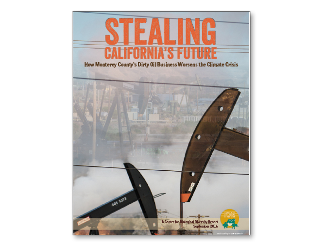 Stealing California report cover